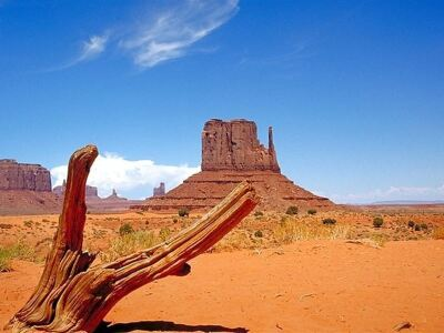 Iconic Vistas in Navajo County, Arizona